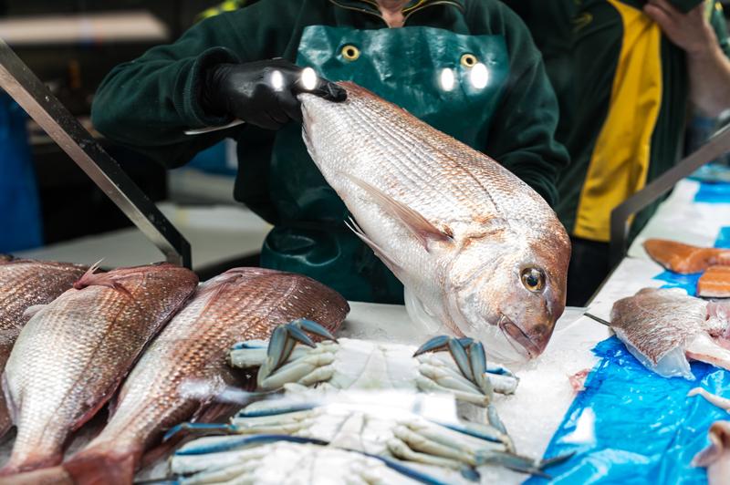 Preston Seafoods